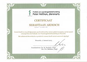 certificaat gebitsverzorger